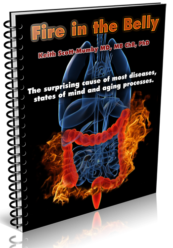 fire in the belly book